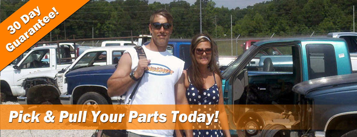 How self service you pull it auto parts yards in SC work